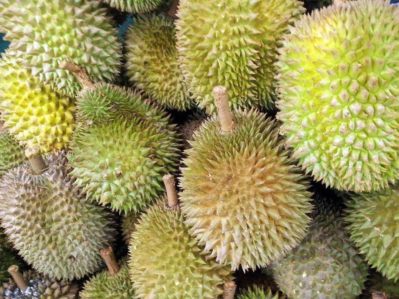Festival Durian, Warga Buru Buah Durian Lokal